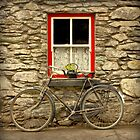Molly's Bike by CliveOnBeara