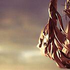Basket in Sunset by cyasick
