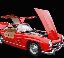 1955 Mercedes 300 SL by WildBillPho