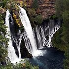 Burney Falls by Dave Davis