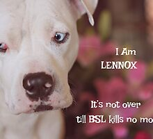 In Honor Of Lennox by Zdogs