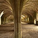 The Cellarium . by Irene  Burdell