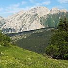 Bargy mountain by a summer day by Patrick Morand