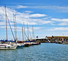 A Touch Of Blue ~ Lyme Regis Harbour by Susie Peek