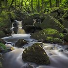Padley Gorge by John Dunbar