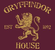 Gryffindor House by machmigo