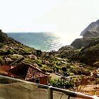 Madeira by Daniel Morrison