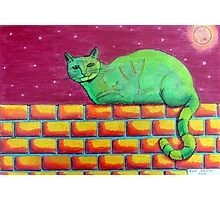 354 - GREEN CAT ON A WALL - DAVE EDWARDS - COLOURED PENCILS - 2012 Photographic Print