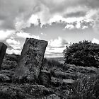 Standing Stones by christof1395