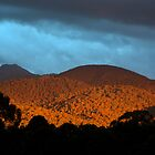 Untitled- Sunset Mt Buller 2 by claire-virgona