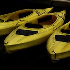 Kayak Trio by vigor