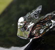 Cadillac 62 Series Convertible Sedan hood ornament (1941) by Frits Klijn (klijnfoto.nl)