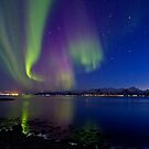Aurora Borealis at Sortland strait by Frank Olsen