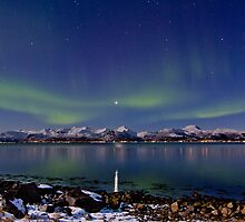 Auroras on the rocky beach II by Frank Olsen