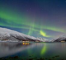 Aurora Borealis at Kattfjord by Frank Olsen