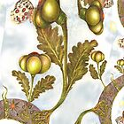 St John's Thistle Garlick Fractal by Helena Wilsen - Saunders