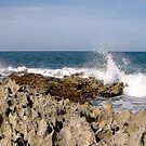 Rocky Shore by globeboater