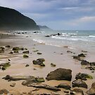 Beach at Wye River by Alex Fricke