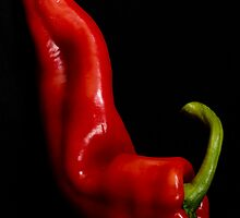Red Pepper - 3 by Ellesscee