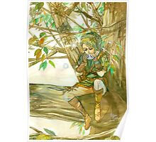 Peaceful Link Poster