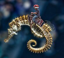 Hippocampus Riding by GolemAura