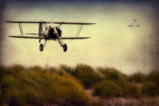 The Wright Brothers.....The Next Generation by TeresaB