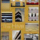 The Hive, Worcester by Gethin Thomas