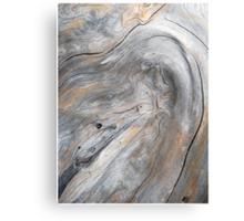 Spirit of the Wood Canvas Print