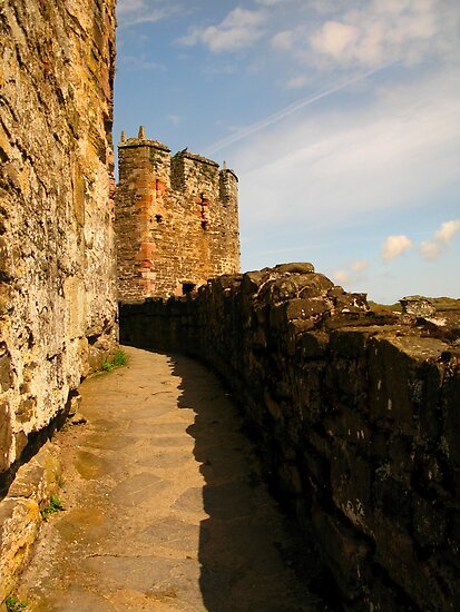 Conwy Castle by Tania  Donald