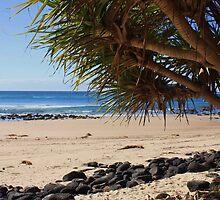 fingal beach ... by gail woodbury