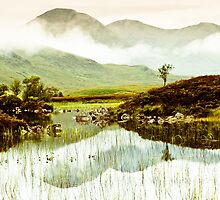 Dawn over Rannoch Moor, Scotland by wildscape