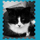 My Cat by Jodie Bennett