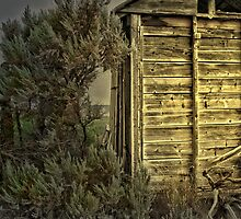 convenience shed  by FighterRoss