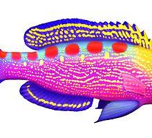 Yellow Spotted Anthias Reef Fish by Carolyn  McFann
