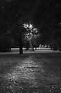 Light by VincenzoL