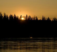 Tanana Sunset by Maria A. Barnowl