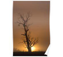 Golden Fog # 2 Poster