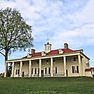 Mount Vernon by djphoto
