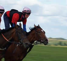 NEWMARKET GALLOPS by picturesfrary