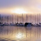 Morning Sun Comes to Elk Lake  by Don Siebel