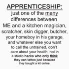 Apprenticeship: one of the many differences between ME and.... by SanguineAddctn