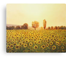 Memories of The Summer Canvas Print