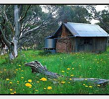Alpine Escape, JB Plain VIC by Chris Munn