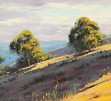 Kanimbla Valley Hills, nsw by Graham Gercken