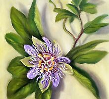 Passion Flower From the Side of a Secluded Road by Randy  Burns