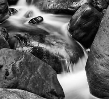 Wet Rocks by Kim Barton