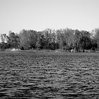 The Black and White Lake by KendraJKantor