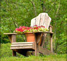 June's Adirondack Chair by Monica M. Scanlan