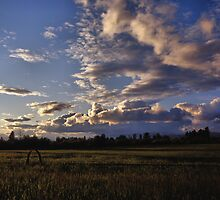 Spring Sunset, Evergreen Montana by Rodney Johnson