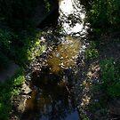 Quiet little creek by agenttomcat